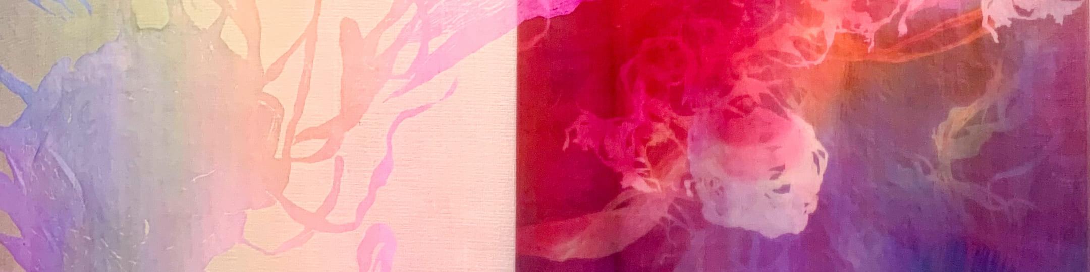 色彩のもつ力を追求 画像